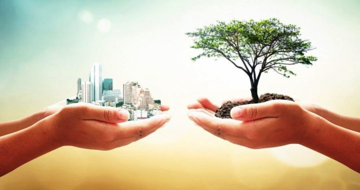 Como os leilões de sucata contribuem para a sustentabilidade ambiental