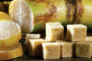 O refino produtivo da cana-de-açúcar no Brasil