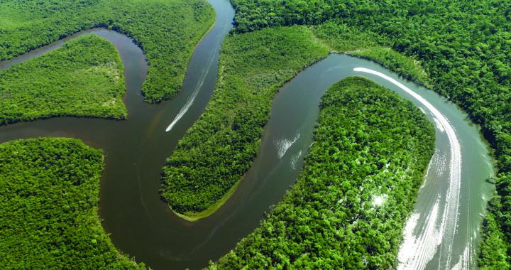 Instituicões se unem para atuar na conservação de Áreas protegidas da Amazônia